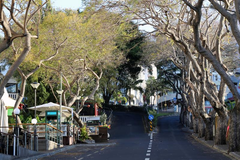 Streets of in Madeira, Portugal During Early Morning royalty free stock image