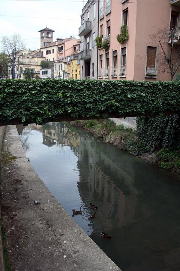 Download Streets of Padua stock image. Image of canal, padua, water - 4843133