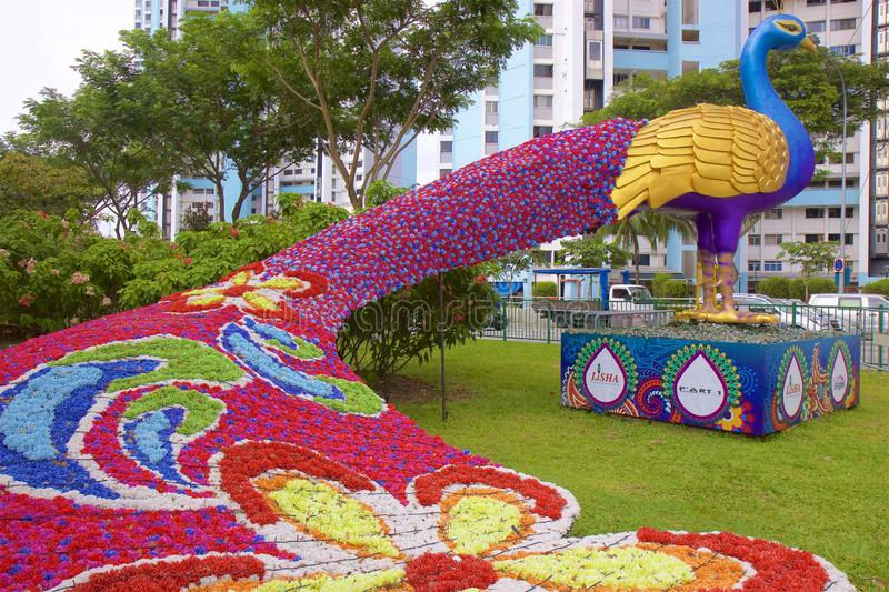 Big flower peacock on the streets of Singapore royalty free stock photo