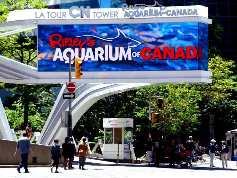 Streetscape con il contrassegno della via per l'acquario di Toronto vicino alla torre del CN fotografia stock libera da diritti