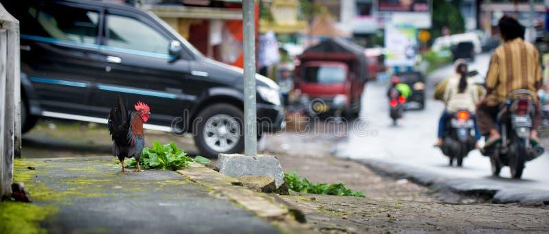 Streetview en el pueblo de Candi Gedong Songo, Java central, Indonesia foto de archivo
