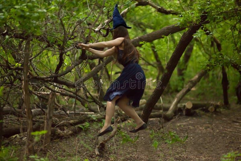strega Foresta del cappuccio e della strega di Vedminsky immagini stock