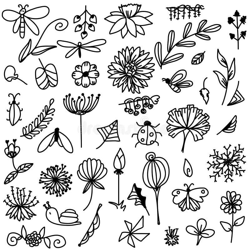 Streifengekritzel der Blume und des Blattes mit Insektenhandlungsfreiheitszeichnungs-Skizzenvektor lizenzfreie stockfotografie