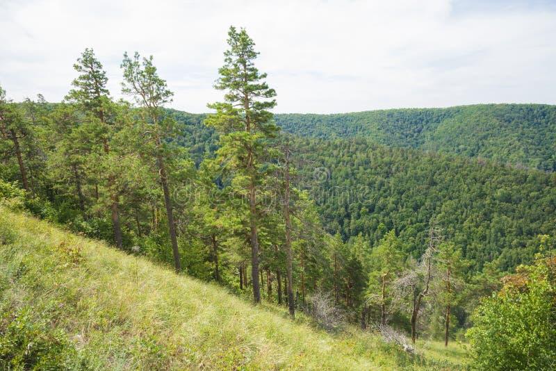Strelnaya Mountain. Attraction of the Samara region. On a Sunny summer day royalty free stock photo