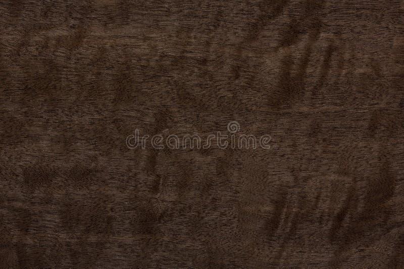 Strenge dunkle Furnier-Blattbeschaffenheit für Ihr neues stilvolles Design stockbild