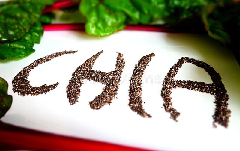 Strenger Vegetarier Chia Seeds stockbild