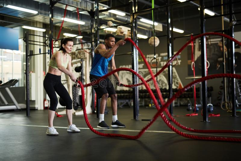 Strength Workout royalty free stock image