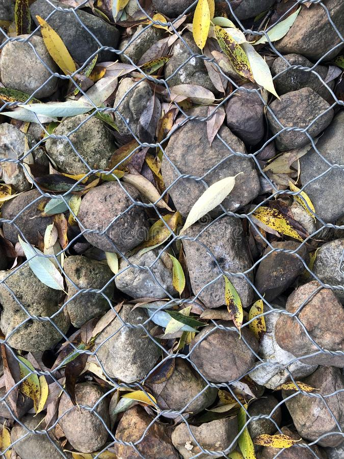 Strengthening the shore rocks in the grid from erosion. Background with stones and autumn leaves of willow.  royalty free stock images