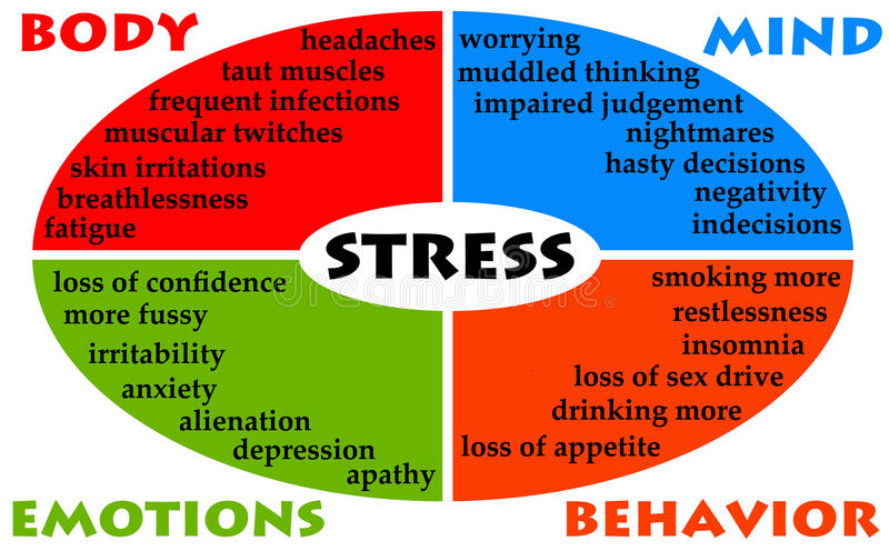 Stress diagram. With impact on body, mind, behavior and emotions stock illustration