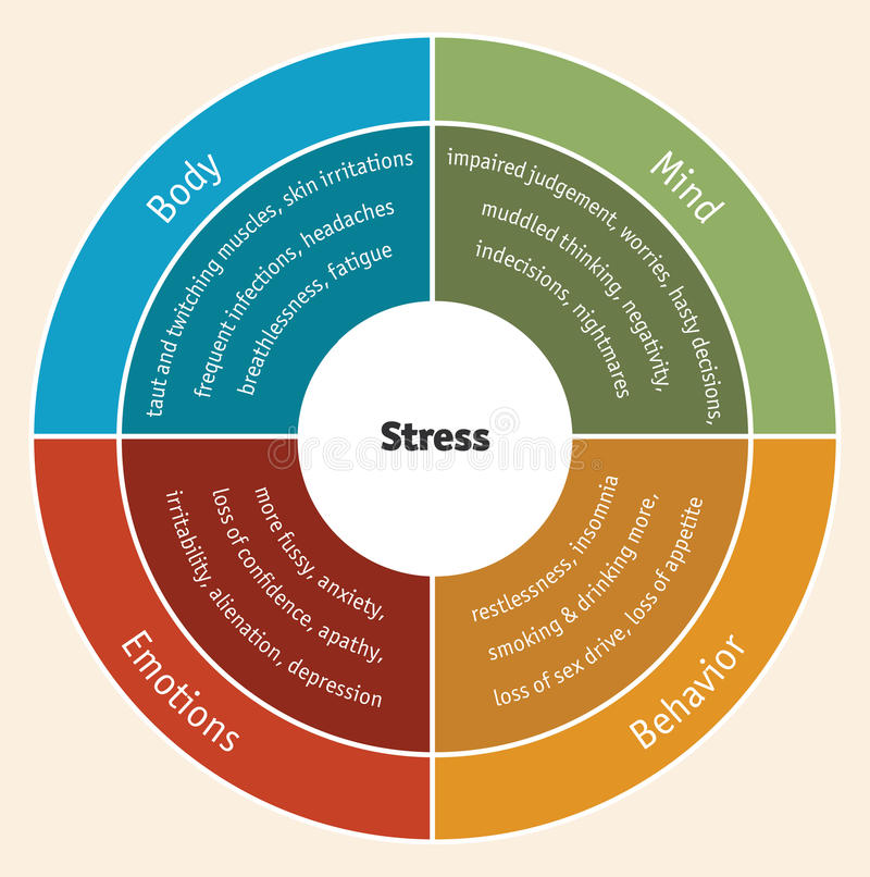 Stress diagram. The impact of stress on mind, behavior, emotions and body Vector version available stock illustration