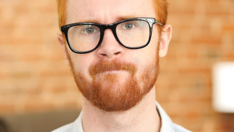 Stressful job, Tense ed Hair Beard Young Man in Glasses. High quality royalty free stock photos