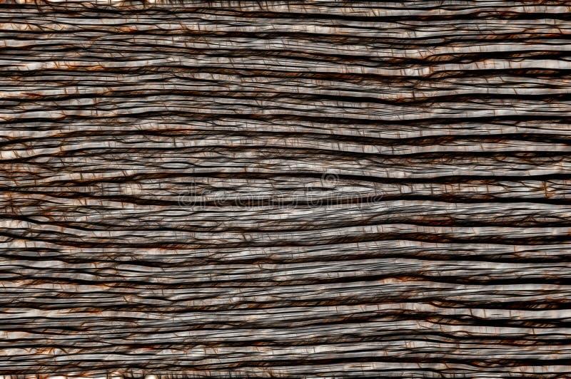 streszczenie okrąża ilustracyjne linii stary tekstury drewna Szary tło zdjęcie stock