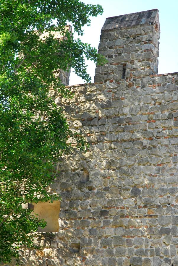Stretch of ancient walls with tree in Monselice town in the province of Padua in the Veneto (Italy) stock photo