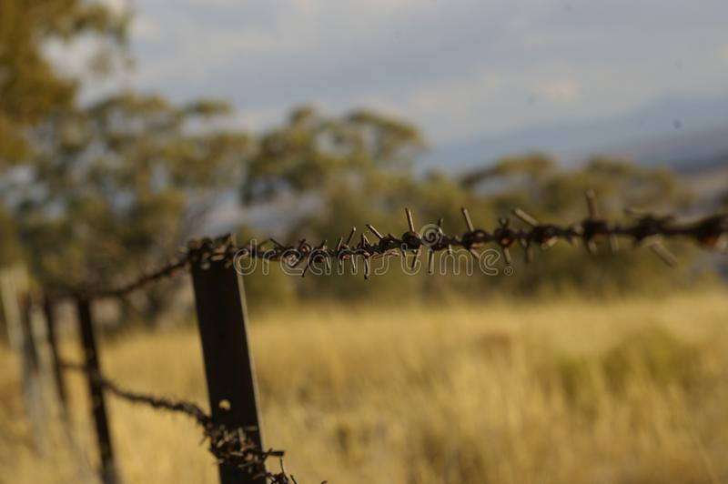 Stretch of rusty barbed wire fence. Going into the distance along a border of local dry, drought stricken farmland in rural New South Wales, Australia royalty free stock photos