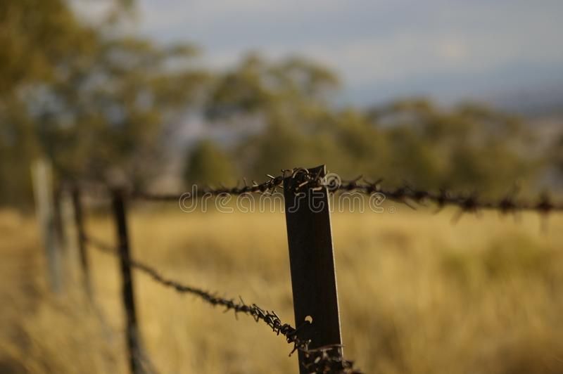 Stretch of rusty barbed wire fence. Going into the distance along a border of local dry, drought stricken farmland in rural New South Wales, Australia royalty free stock images