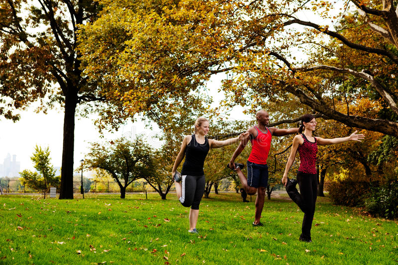 Stretching Fitness. A group of people in the park stretching stock photography