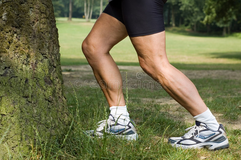 Stretching legs royalty free stock image