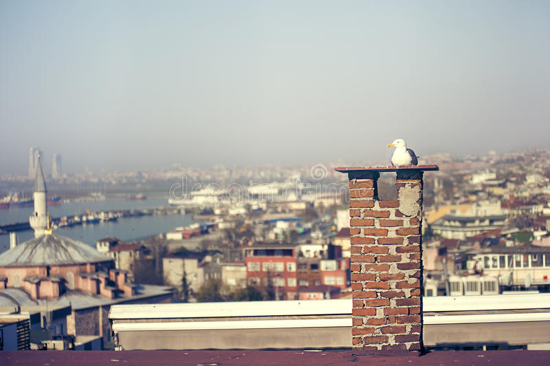 Stretto di Bosphorus dal tetto superiore fotografia stock