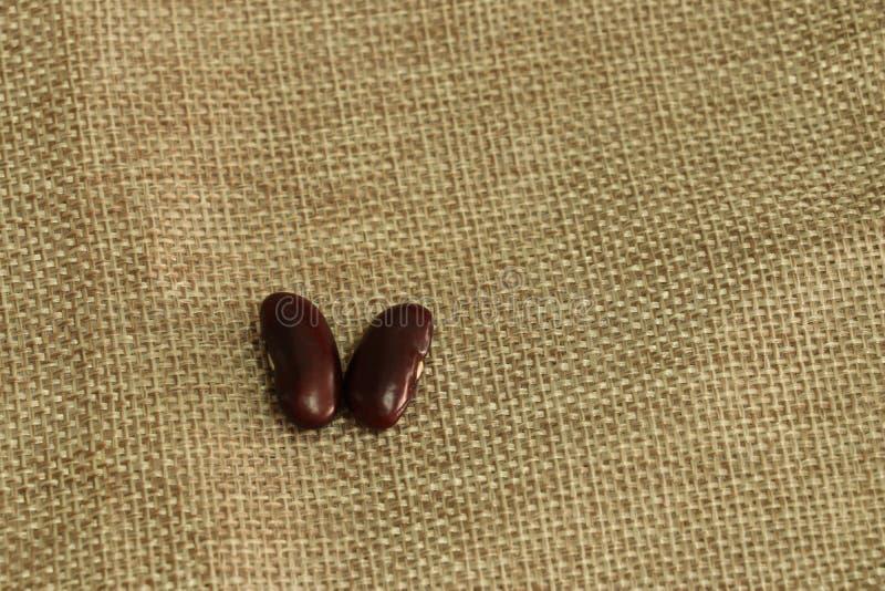 Streuung der roten Bohne oder der Gartenbohne auf braunem Sack stockbilder