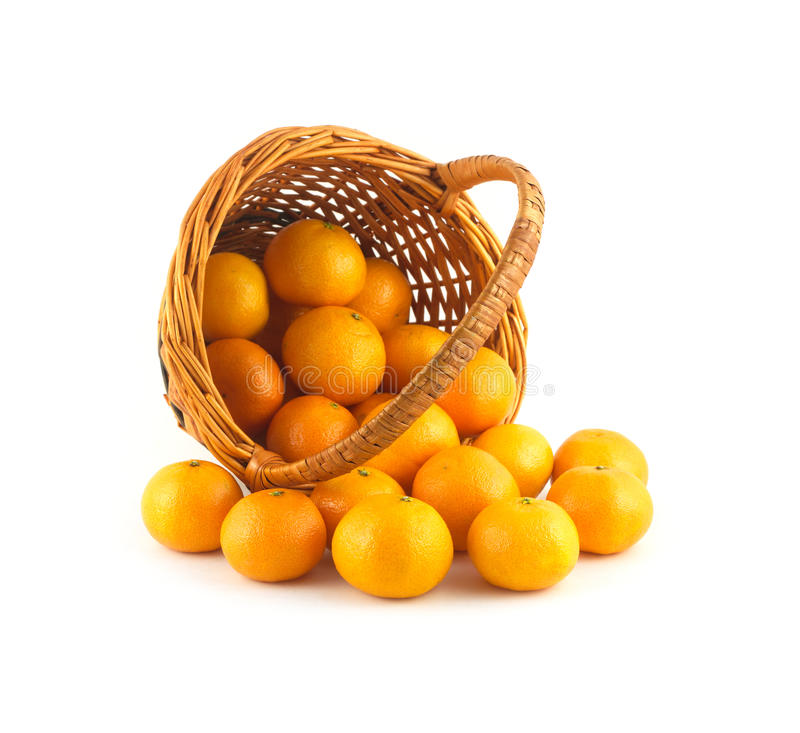 Strewed tangerines from wicker basket lays isolate. Strewed tangerines and inverted wicker basket isolated on white background close up royalty free stock photography