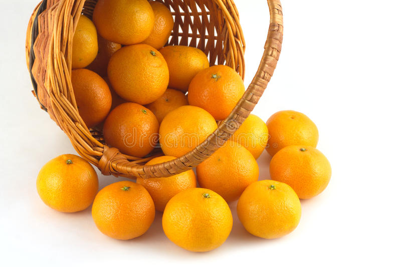 Strewed tangerines from wicker basket lays isolated. Strewed tangerines and inverted wicker basket isolated on white background close up royalty free stock photography