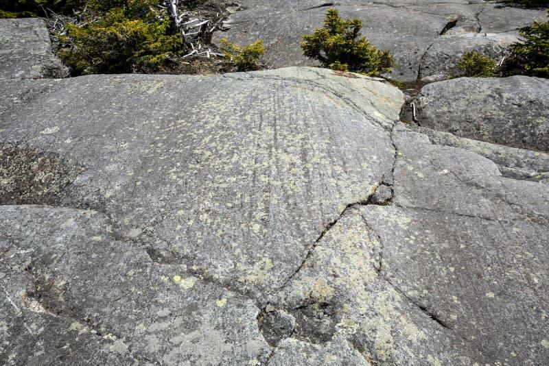 Is- striations i gnejs på toppmötet av Mt Kearsarge arkivbilder