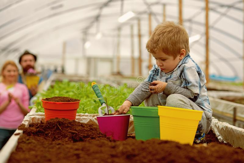 Strijdverontreiniging kleine de strijdverontreiniging van de jongenslandbouwer strijdverontreiniging door installaties te kweken  stock afbeelding
