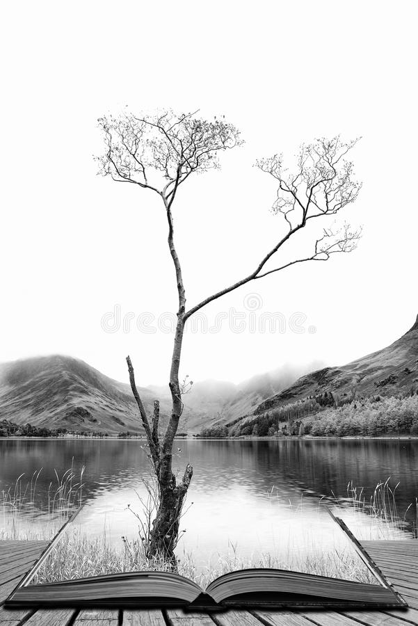 Download striking black and white high key landscape image of lake butter stock image image