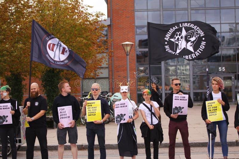 Strikt vegetarian och vegetarian för djur befrielse protesterar på en demonstration mot grymhet in mot djur och ätakött och mejer arkivfoto