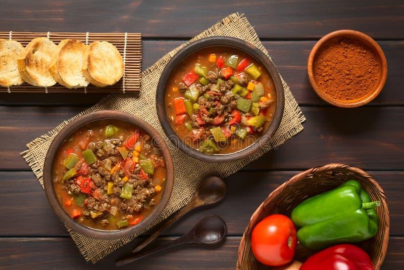 Strikt vegetariangulasch med sojabönakött arkivbild