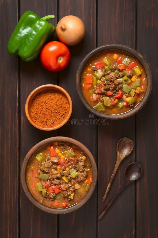 Strikt vegetariangulasch med sojabönakött royaltyfri bild
