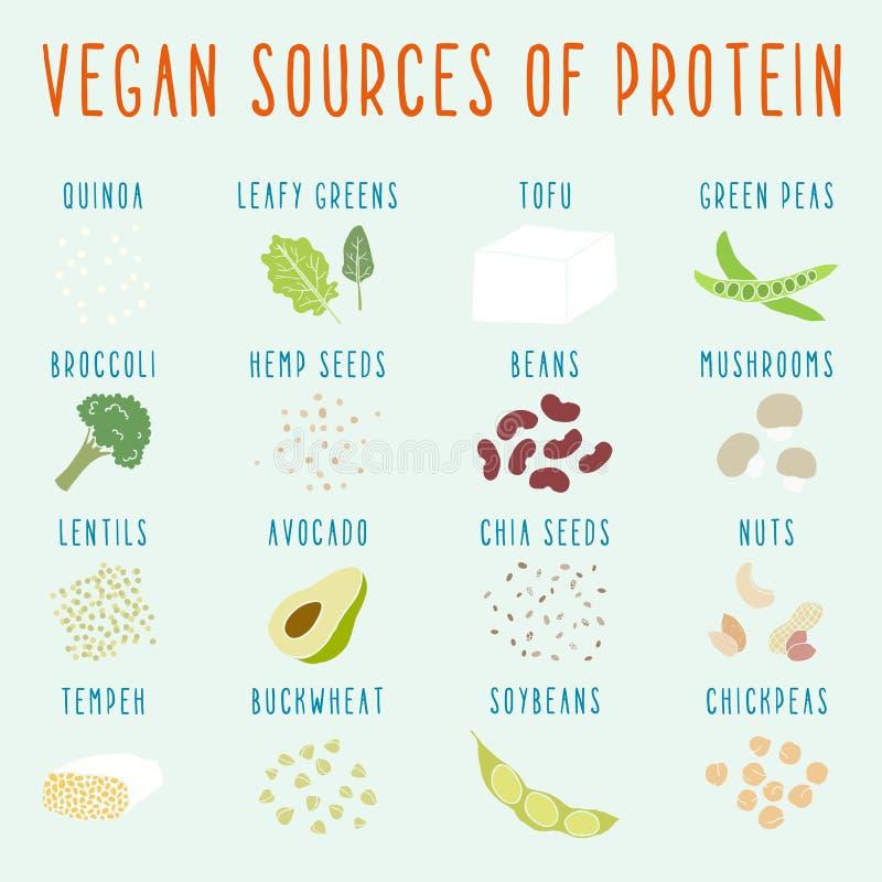 Strikt vegetariankällor av protein vektor illustrationer