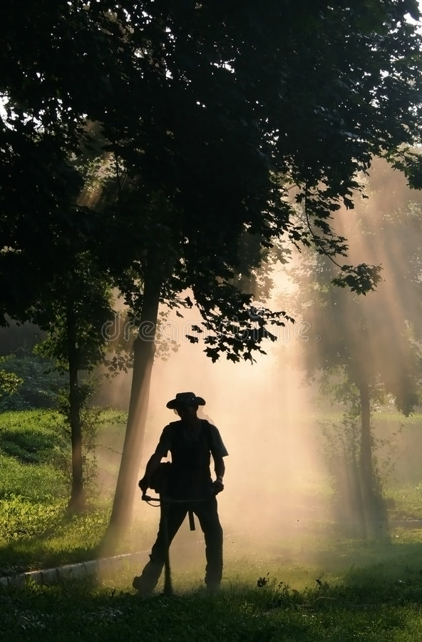 Strimmer. Men cut the grass with a strimmer in nice light stock photos