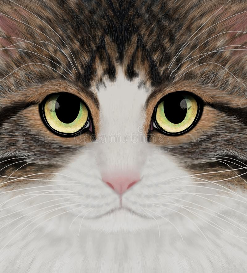 Strimmiga Tabby Cat Portrait stock illustrationer