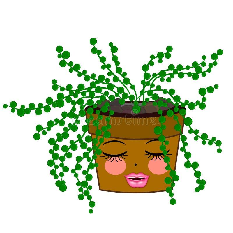 String of pearls Cactus. String of Pearls Cantus Senecio rowleyanus plants arrangements in a modern pot illustration concept royalty free illustration