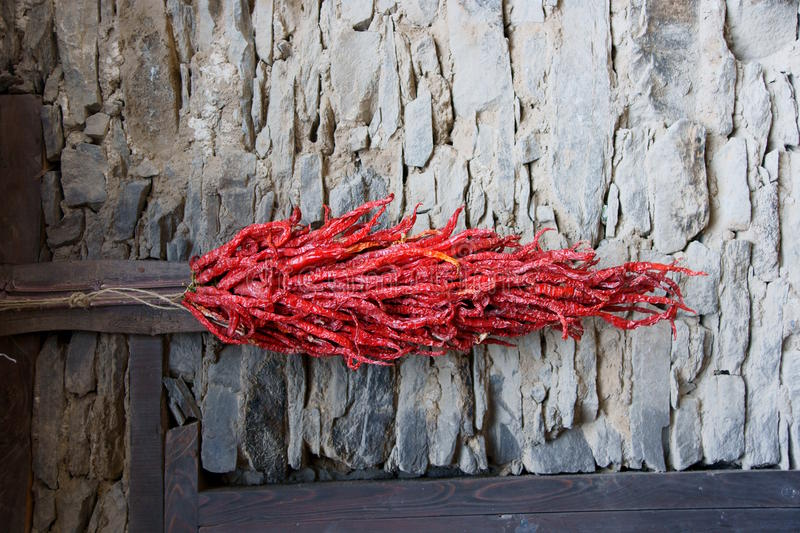 A string of red peppers royalty free stock image