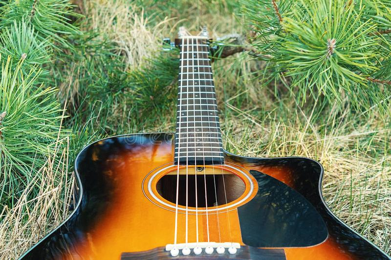 Acoustic guitar is located near the green fir. Stringed musical instrument. Acoustic guitar is located near the green fir royalty free stock images