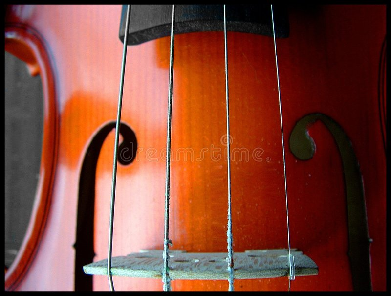 Download Strings stock photo. Image of violin, peace, strings, music - 176820