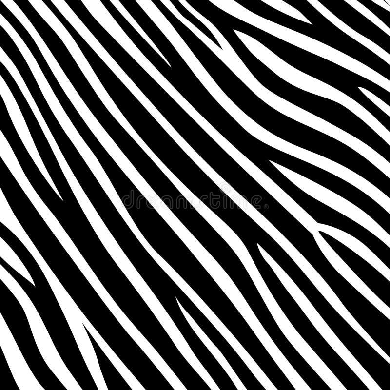 Stripe animal jungle texture zebra vector black white vector illustration