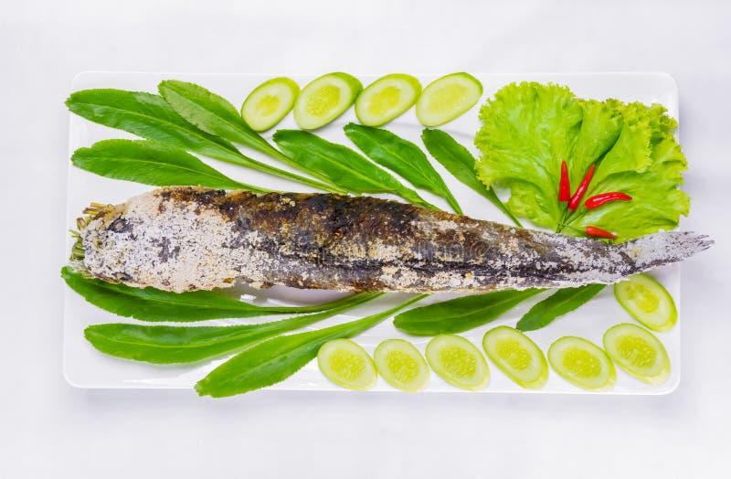 Striped грилем рыбы snakehead при покрытое соль стоковые изображения
