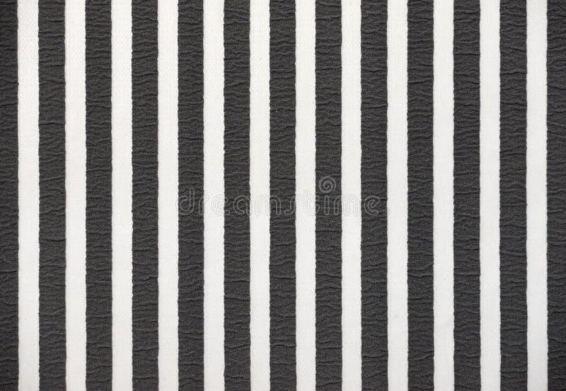 Striped черно-белая изолированная предпосылка, стоковая фотография