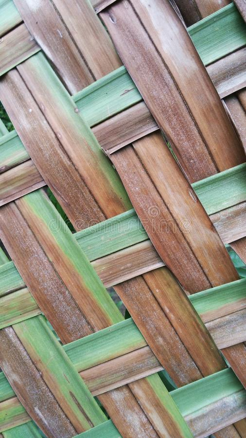 striped coconut leaf pattern stock photo