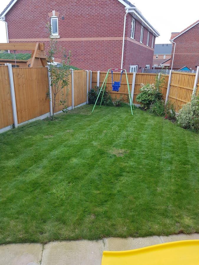 Striped lawn stock photo