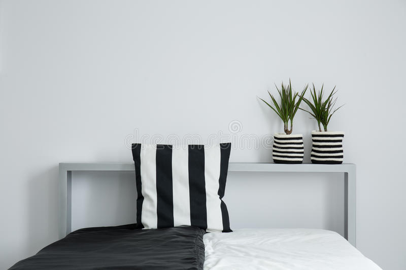 Striped pillow on black and white coverlet. And two plants in striped material pots on bolster of king-size bed royalty free stock image
