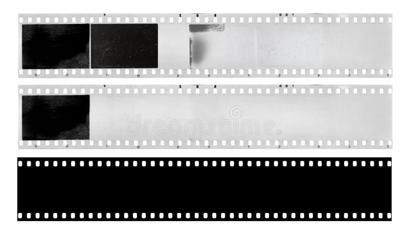 Strisce di pellicola fotografia stock libera da diritti