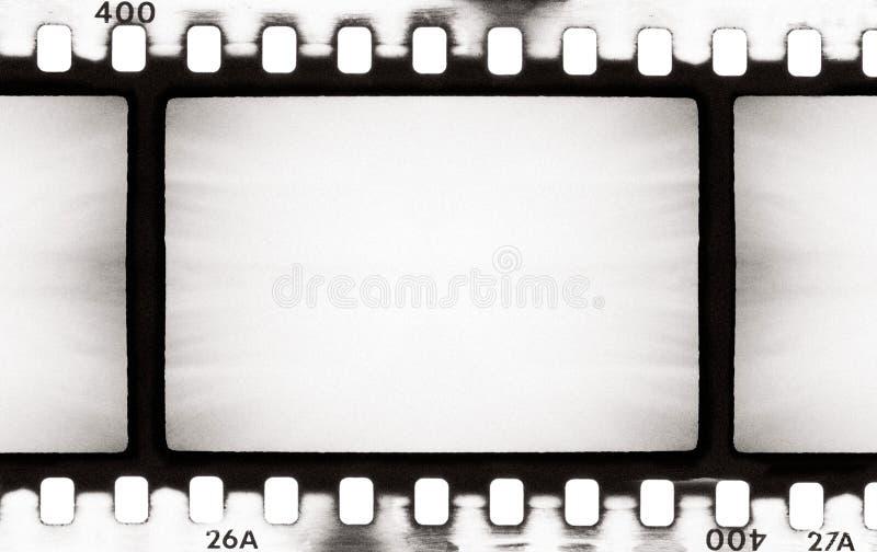 Striscia della pellicola di BW illustrazione di stock