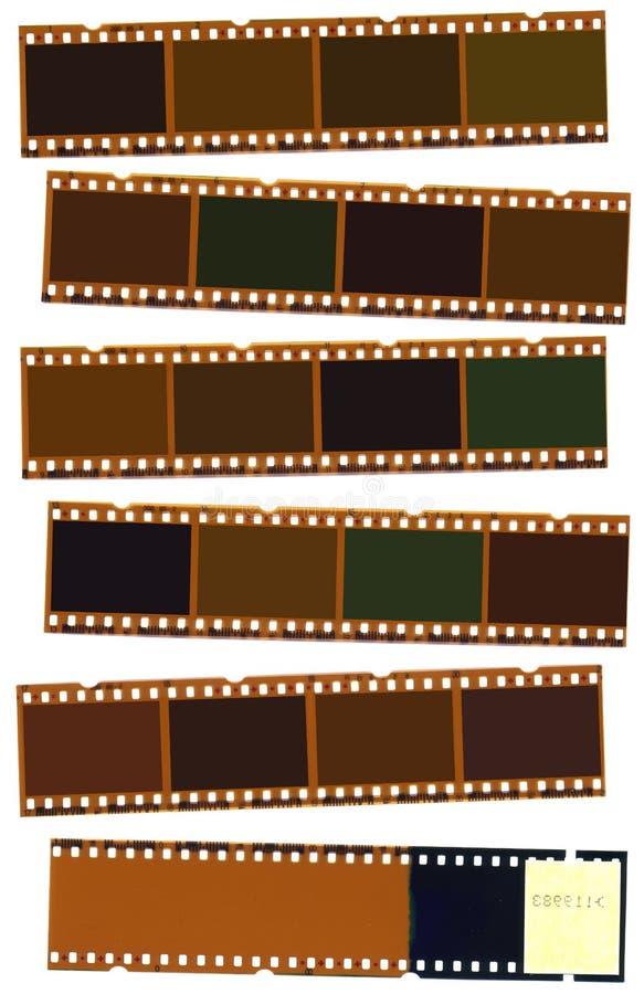 Striscia della pellicola fotografica illustrazione vettoriale