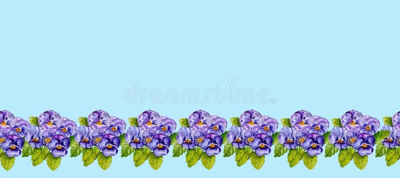 Striscia delle viole del pensiero lilla dipinte con l'acquerello royalty illustrazione gratis