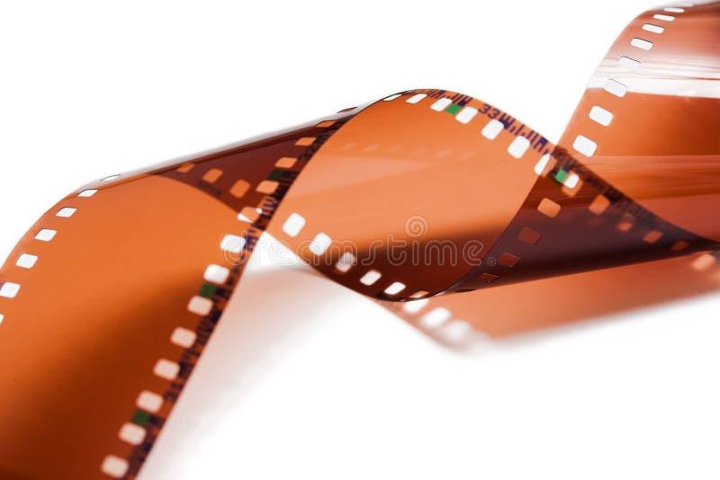 Striscia di pellicola della foto isolata su bianco immagini stock