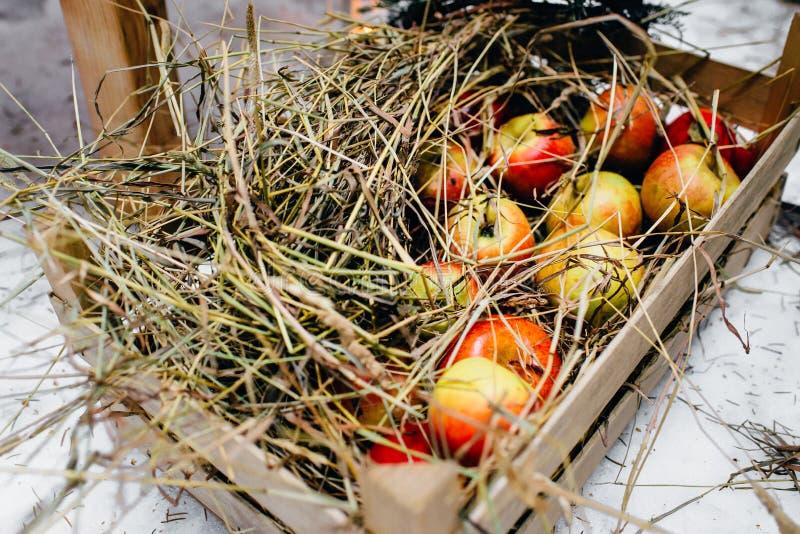 Stro op rode appelen in een krat stock afbeeldingen